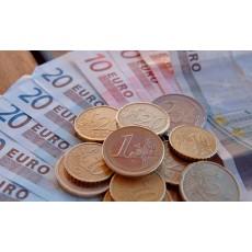 Dvigubas valiutos rodymas (litų ir eurų atvaizdavimas)