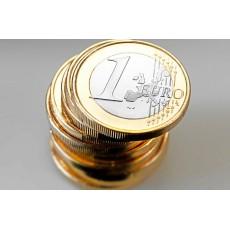Valiutos (iš litų į eurus) konvertavimas OpenCart administravime